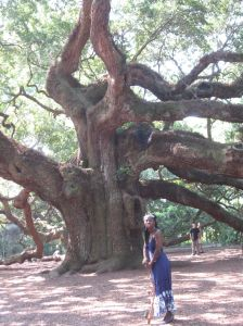 Queen Quet, Chieftess of the Gullah/Geechee Nation (www.QueenQuet.com) stands proudly at the Angel Oak on Johns Island, SC in the Gullah/Geechee Nation.