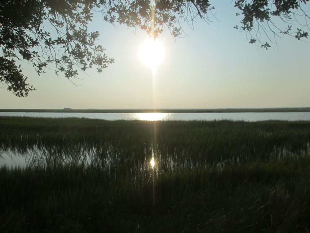 Gullah/Geechee Authentic Tours and Workshops (1/6)