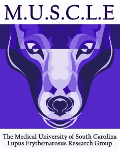 MUSCLE_Logo_purple2