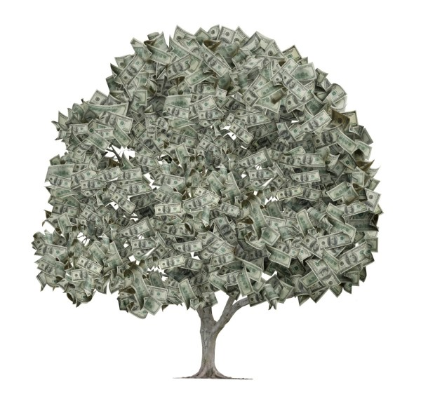 iStock_money tree