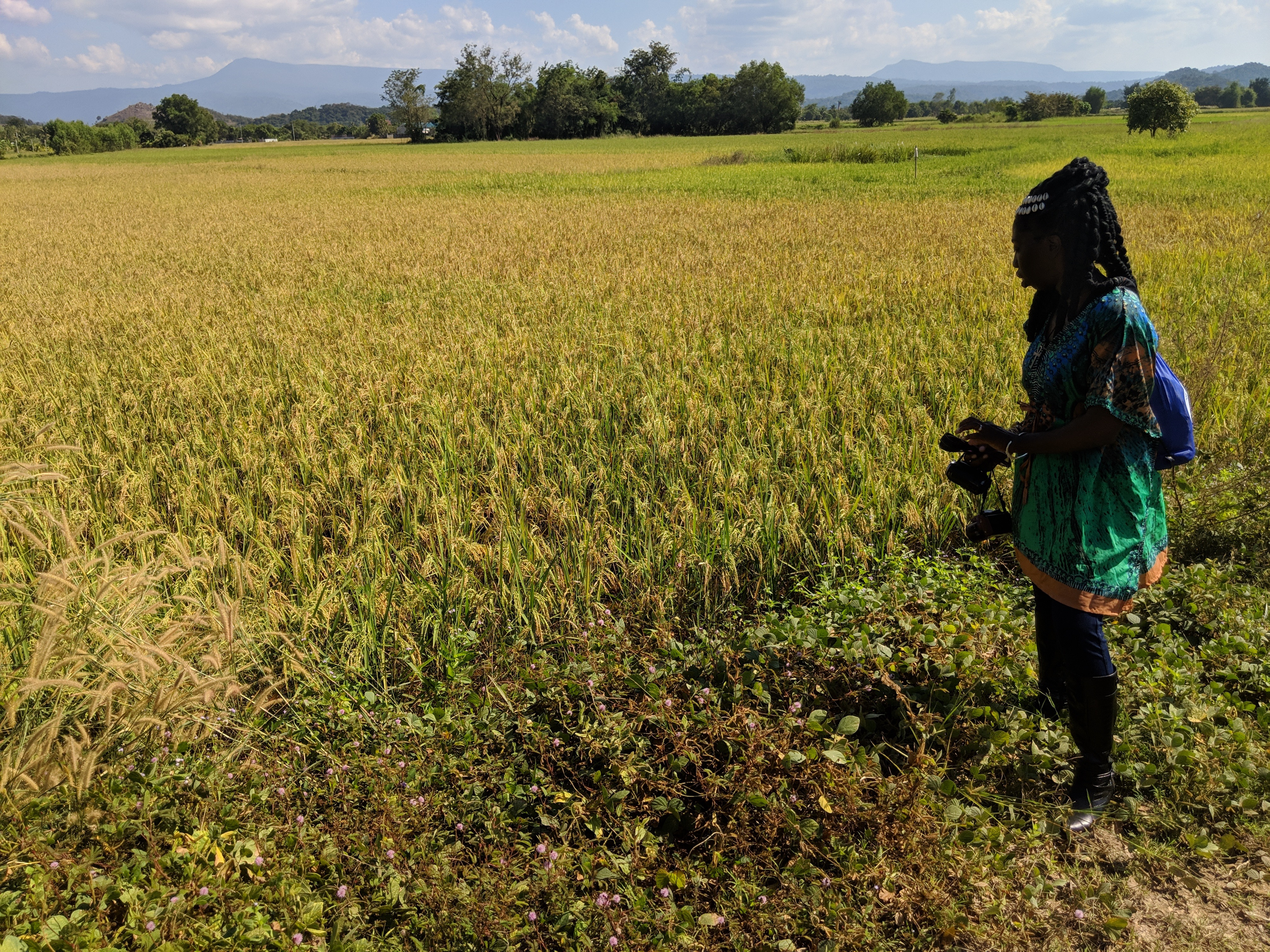 Queen Quet of the Gullah/Geechee  in Rice Paddy in Thailand